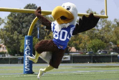 Celebirdy: Eagle poll