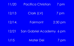 Boys Varsity Basketball Home Schedule