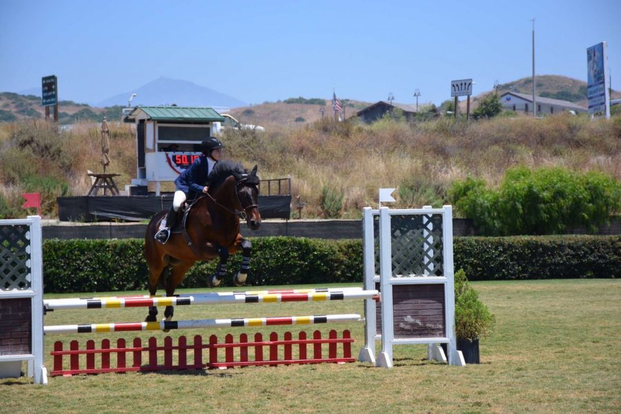 Life+of+an+equestrian
