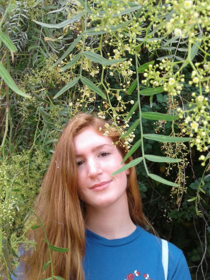 Carina Bachmann