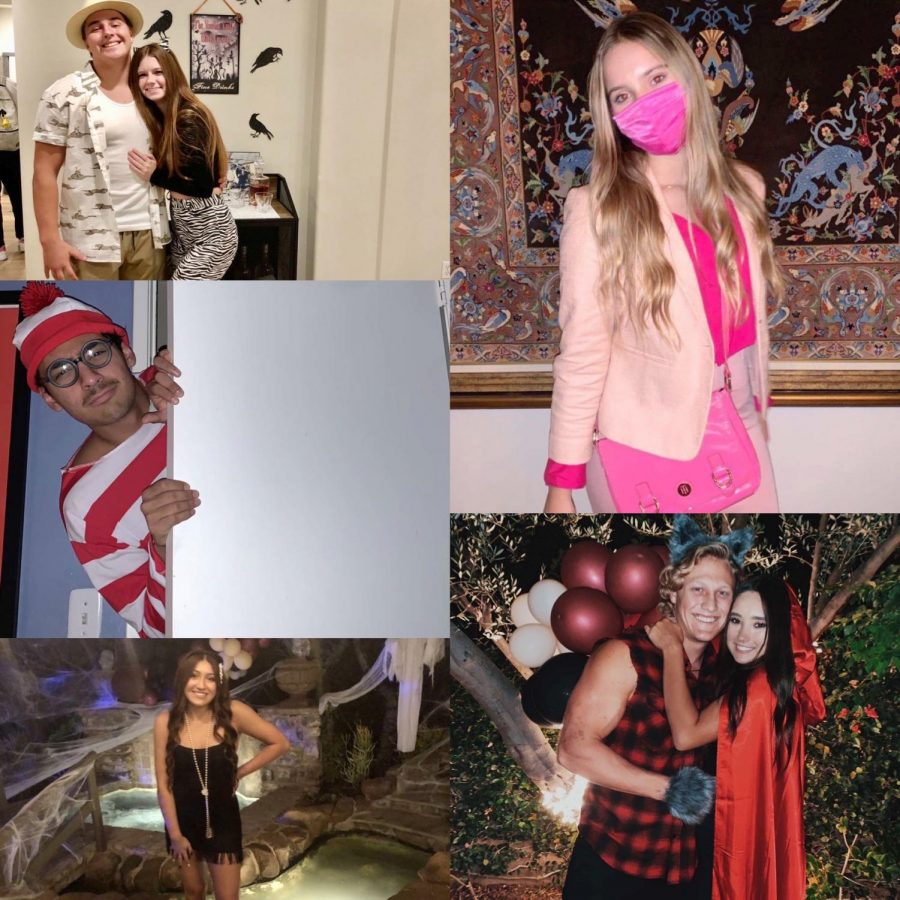 From left to right: Anthony Comestro and Lily Matteson as a Safari Guide and a Zebra, Shane Townsend as Elle Woods from Legally Blonde, Aldo Ruiz Ortiz as Waldo from Where's Waldo, Matt Auriemma and Brooke Owens as the Big Bad Wolf and Little Red Riding Hood, and Kennedy Santini as a Flapper from the 1920's.