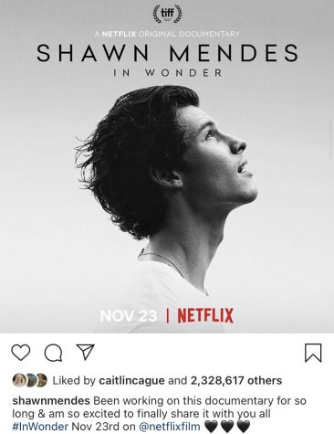 Picture with caption from Shawn Mendes