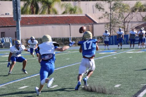 Senior Michael Buckley makes a catch during a team scrimmage.